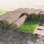 sod-rolls2.jpg